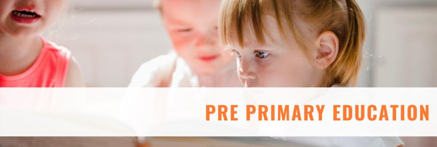 Pre primary teacher training